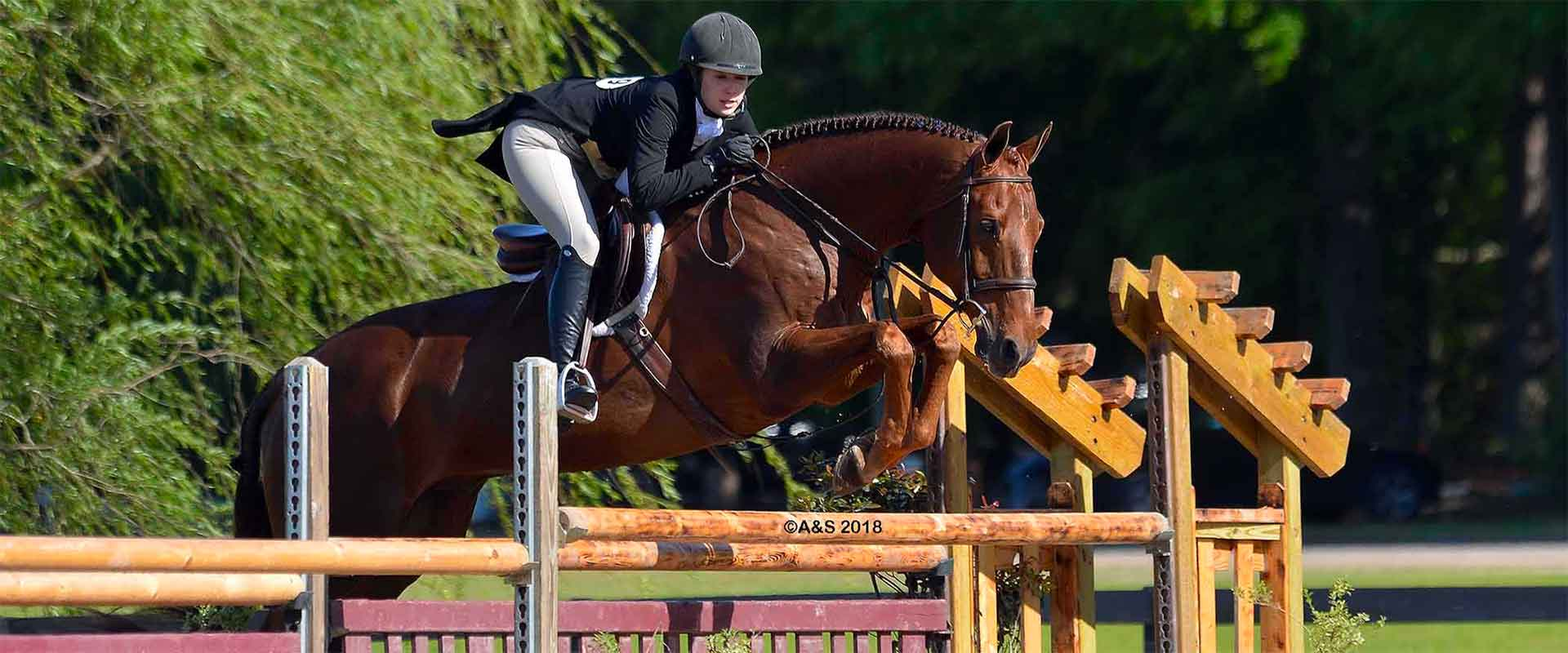 structured-lessons-equestrian2